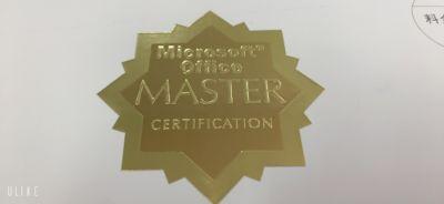 難関資格を取得して【マスター】の称号が贈られました!